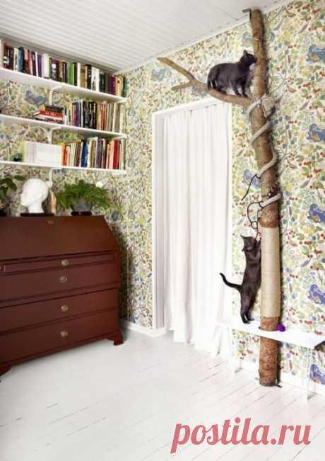 Натуральное дерево для домашнего уюта