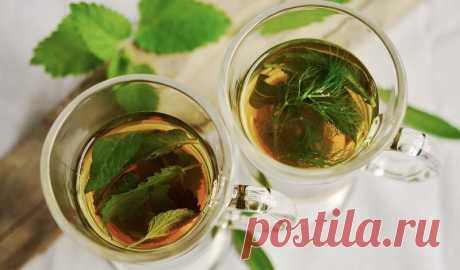 Три натуральных напитка, которые могут очистить легкие и укрепить иммунитет человека - vostokmedia - медиаплатформа МирТесен