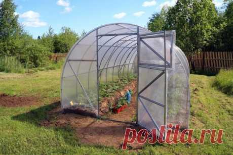 Как подготовить теплицу осенью Какие работы нужно провести в теплице осенью, чтобы в будущем сезоне она дала богатый и здоровый урожай.