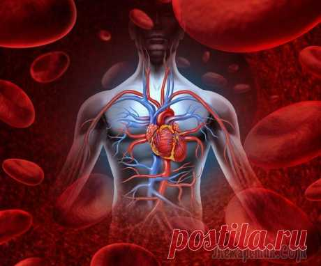 Чистка крови народными средствами Чистка крови в домашних условиях — это совершенно несложная процедура, не требующая каких-то особенных медицинских знаний или сверхчеловеческих усилий. Если бы все знали, сколько под рукой средств, по...