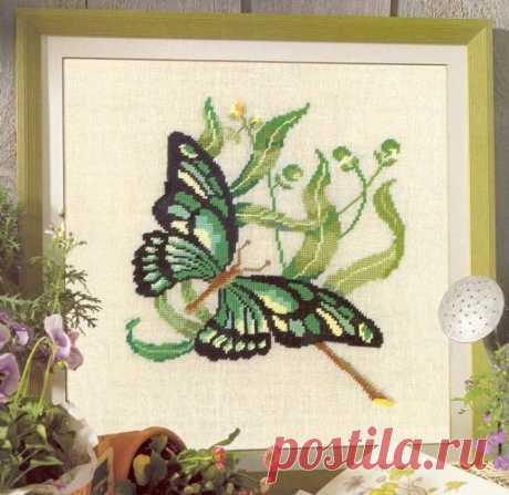 Вышивка крестом бабочка. Как вышить бабочку крестиком Вышивка крестом бабочка. Как вышить бабочку крестиком