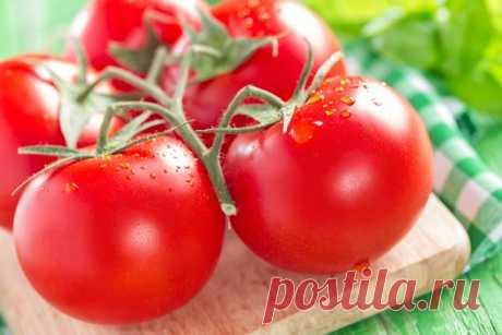 7 маленьких секретов выращивания вкусных помидоров  Ну, во-первых, надо определить — что значит вкусный помидор? Это мясистый, с тонкой шкуркой, сладкий, нежной мякотью, без неприятной кислинки, с характерным «вкусным» помидорным запахом плод. Согласн…