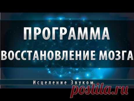 Программа восстановление сосудов головного мозга [Школа Космомагов Игоря Андреева]