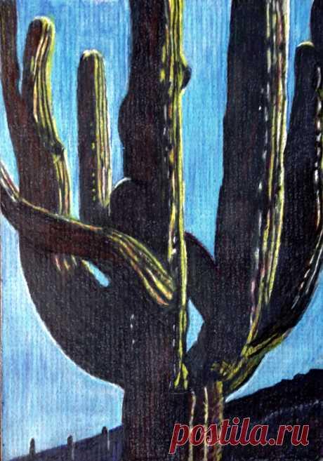 Mighty saguaro | Etsy