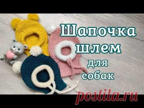 Шапочка шлем для собак, вязание спицами, hat for dogs