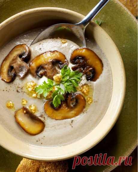 Суп с грибами и сливочным сыром — Sloosh – кулинарные рецепты