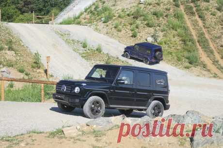 Австрийские горки для автомобиля за 10 млн | VestiNewsRF.Ru