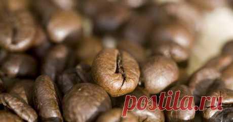 Вылечить диабет при помощи кофе — Интересные факты