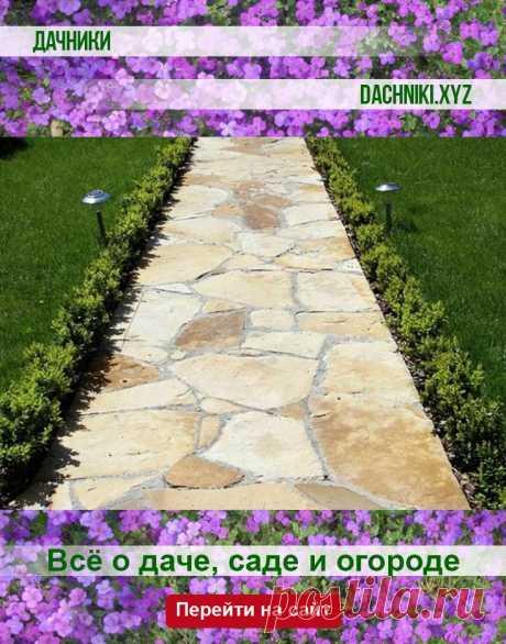 4 полезных совета по обеспечению стока дождевой воды с садовой дорожки #сад #дача #растения #огород