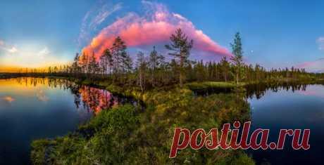 Север Ленинградской области. Автор фото — Фёдор Лашков: nat-geo.ru/photo/user/27510/