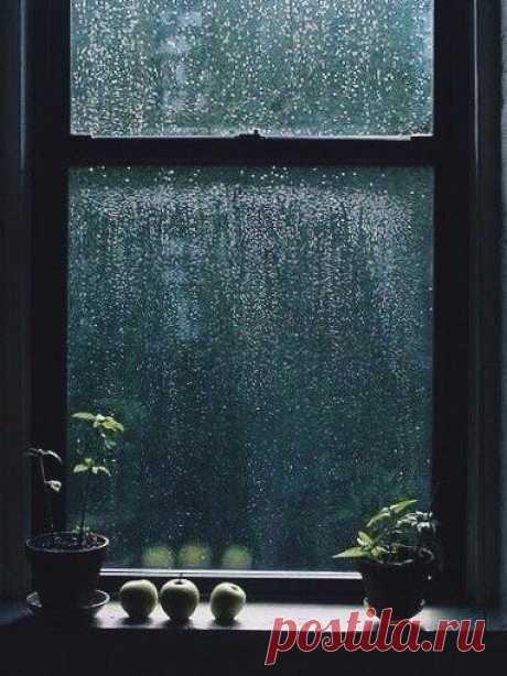 Люблю мечтать под шум дождя, Смотреть на капли на стекле, Люблю побыть внутри себя… Чтоб чашка кофе на столе. Я заберусь под теплый плед, Свернусь калачиком и вот- Я погашу на кухне свет И спрячусь в сумрак от забот. Мне мягко и тепло внутри, Пушисто и совсем не сыро, В субтропиках моей любви, Вдали от тонущего мира. Там за окошком рассвело, И девять баллов по шкале ненастья, А я внутри и мне тепло, Я словно в раковине счастья Уютен мой смешной мирок, Его хочу я разделить ...