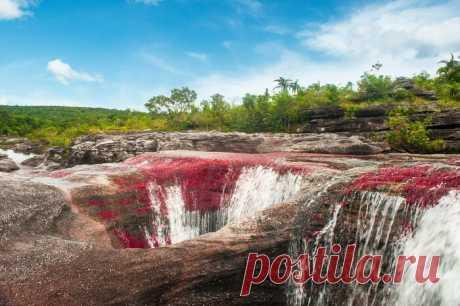 Как появилась разноцветная река, похожая на радугу: Скрытое природное сокровище Каньо-Кристалес