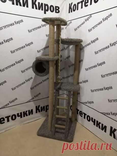Когтеточка в Севастополь!
