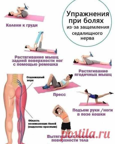 Упражнения при защемление или воспаление седалищного нерва (ишиас) помогут облегчить боли или даже полностью устранить их.   OK.RU