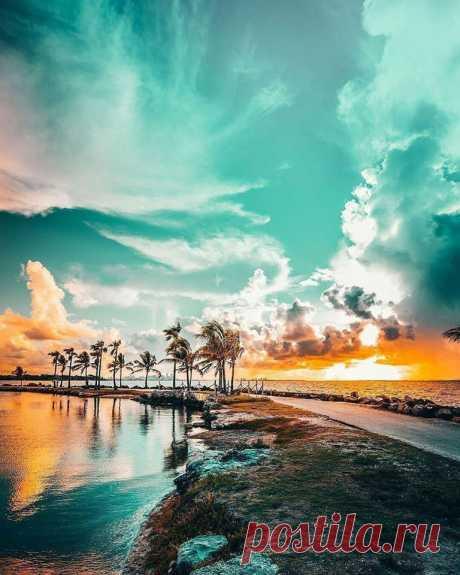 Флорида - край апельсинов, пляжей и тематических парков.США.