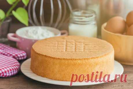 Невероятный рецепт торта с желе   Еда от ШефМаркет   Яндекс Дзен