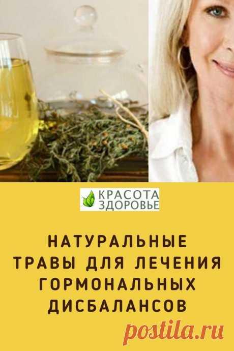 С этими природными травами вы можете лечить все виды гормональных дисбалансов.  Натуральные травы для лечения гормональных дисбалансов. ➡️ Кликайте на фото, чтобы прочитать статью полностью