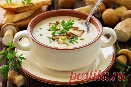 Грибной суп-пюре из шампиньонов - 7 вкусных рецептов