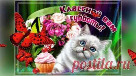 #субботой #добрыйдень #суббота #музыкальнаяоткрытка #Сдобрымутромсубботы#утро#поздравления#позитив#суббота#утро#хорошийдень#суббота#удачнойсубботы хорошей субботы,доброй хорошей субботы,хорошего дня субботы,открытки хорошей субботы,суббота,с субботой,хорошей осенней субботы,поздравление с субботой,суббота пожелание хорошего дня,чудесной субботы,прекрасной субботы,хороших выходных,выходные,выходные дни,музыкальная открытка хороших выходных,музыкальная открытка отличных в...
