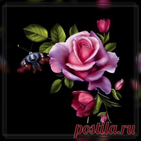 Схема вышивки «Роза в черном.» - Вышивка крестом