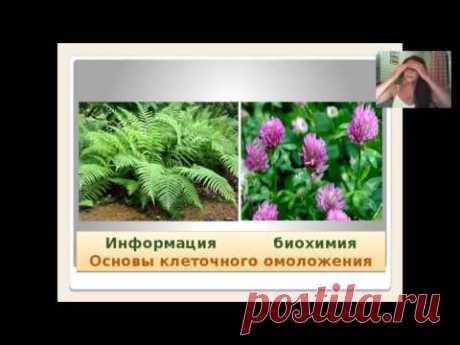 Ольга Левонюк  10 августа