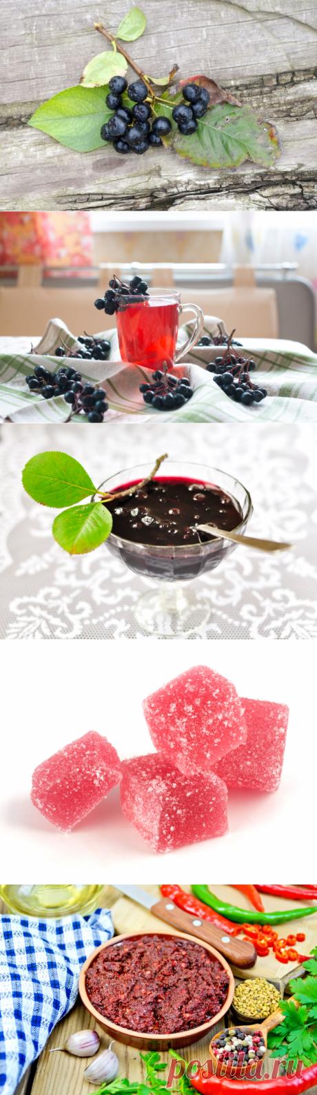 Черноплодная рябина. Как справиться с урожаем осенних ягод | Продукты и напитки | Кухня | Аргументы и Факты
