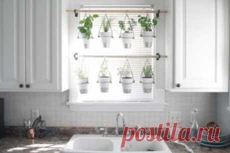 31 Great Indoor Herb Garden Ideas for Healthy Life ~ GODIYGO.COM