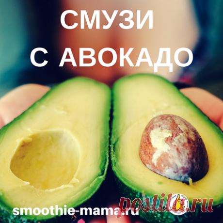 """Смузи с авокадо рецепт для завтрака - Смузи Мама Завтрак для энергичный и целеустремленных людей: смузи с авокадо и бананом. Вы получаете """"три в одном"""": комплекс витаминов, заряд энергии и вкусный коктейль"""