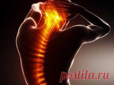 Комплекс упражнений для спины и шеи: укрепляем и стабилизируем позвоночник - МирТесен
