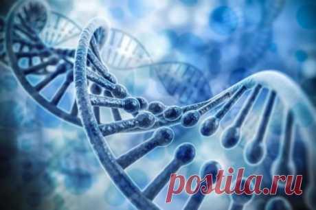☝СЛОВА, ИХ СИЛА И ПОСЛЕДСТВИЯ   Ученые пришли к ошеломляющему выводу: ДНК воспринимает человеческую  речь. ДНК – это макромолекула, которая обеспечивает хранение и передачу  из поколения в поколение и реализацию генетической программы развития и  функционирования нашего организма. Молекулы наследственности получают и  акустическую, и световую информацию: молчаливое чтение доходит до  клеточных ядер по электромагнитным каналам. Один текст оздоравливает  наследственность, а другой ее травмирует.