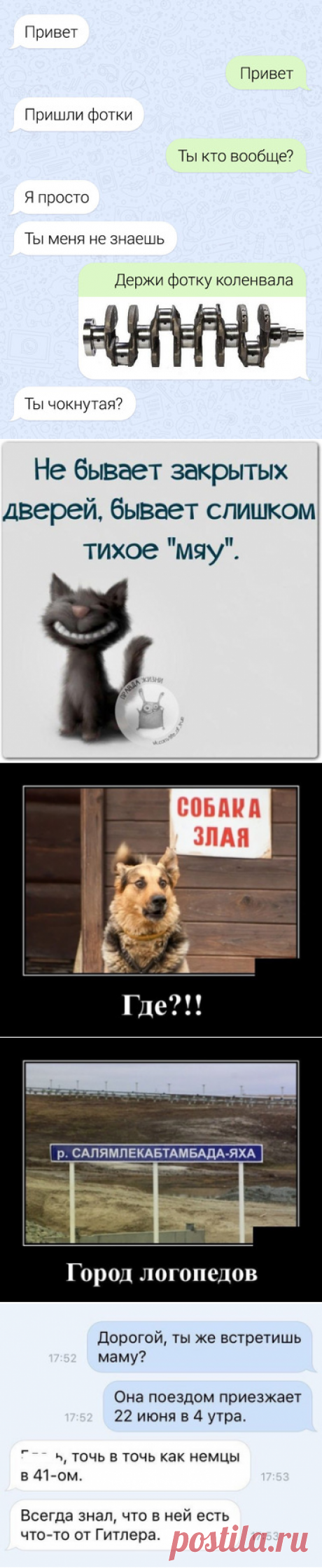 Улыбочку. - 20 Ноября 2018 - Наша Планета