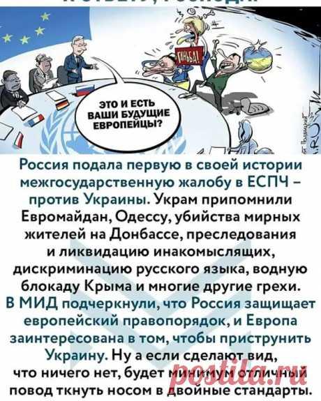 Первая ласточка генеральной прокуратуры: Жалоба на Украину в Европейский суд по правам человека (ЕСПЧ) - Личное мнение и позиция журналиста - медиаплатформа МирТесен