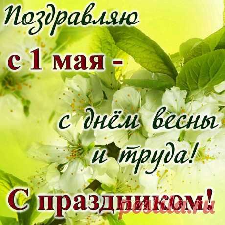 Открытка - Яркая салатовая картинка с поздравлением на праздник Весны и Труда
