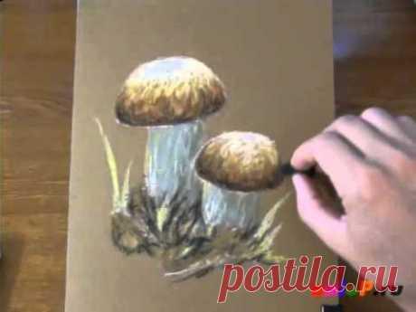 Рисуем белые грибы пастелью