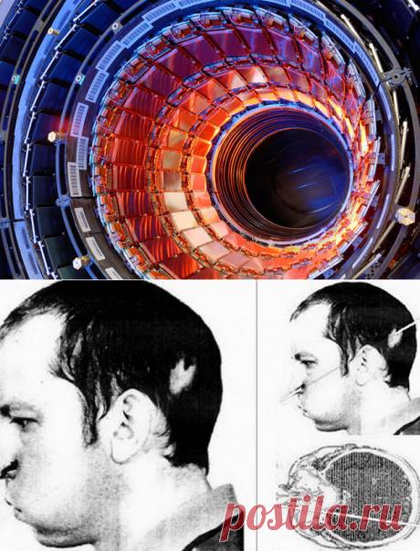 Человек, который сунул голову вускоритель частиц — Популярная механика
