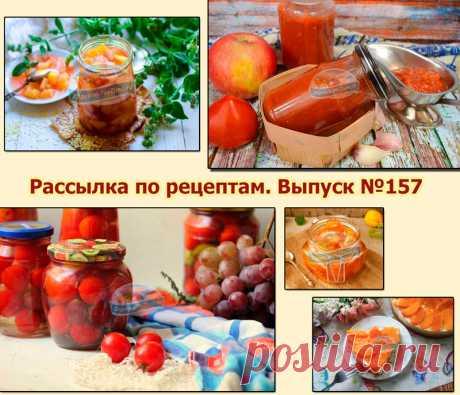 Очень вкусная капуста  с помидорами  на зиму: золотые рецепты с фото