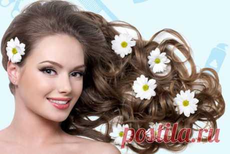 15 лучших растительных масел для укрепления и роста волос!