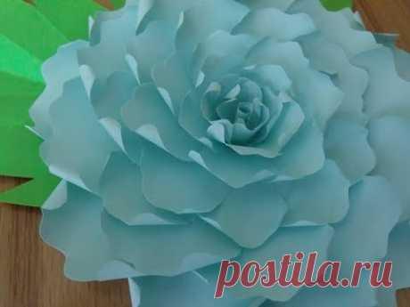 Роза из бумаги. Простой, но красивый цветок из бумаги!