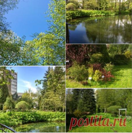 Елена Чернышова - В мае сад расцветает нежными весенними оттенками