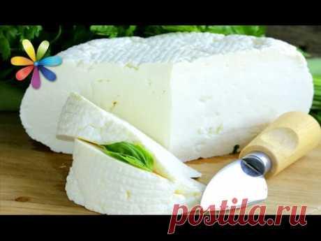 Домашний сыр фета, который в 2 раза дешевле магазинного! – Все буде добре. Выпуск 683 от 07.10.15
