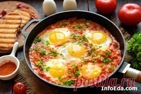 Шакшука (яичница с помидорами): рецепт с фото | InfoEda.com Арабская яичница с помидорами шакшука – вкусный и сытный завтрак для всей семьи. Читаем пошаговый рецепт с фото, как приготовить шакшуку в домашних условиях.
