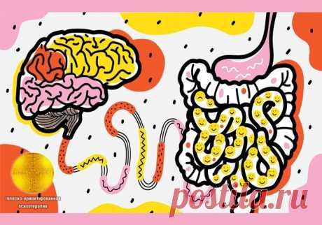 La RAZÓN INFERIOR: como las bacterias intestinales dirigen nuestro cerebro.