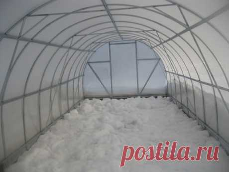 Rules of preparation of the greenhouse by winter