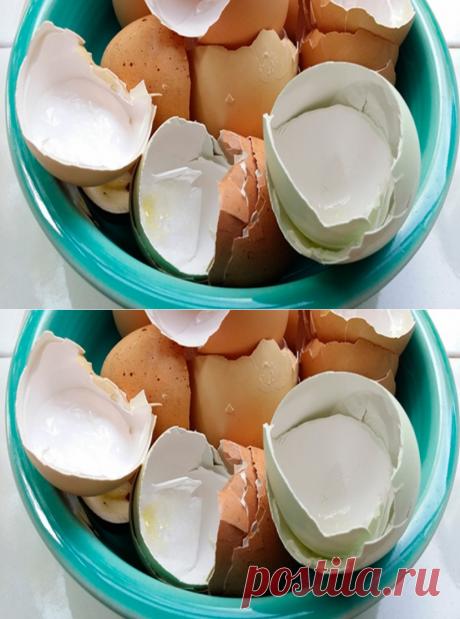 Вы перестанете выбрасывать яичную скорлупу, когда узнаете для чего её нужно варить!