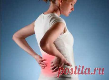 Когда болят почки — жить не хочется — Здоровье и долголетие
