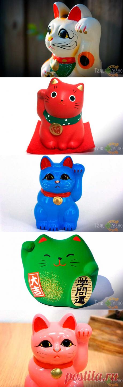Манэки-нэко: японская кошка с поднятой лапой, история и значение