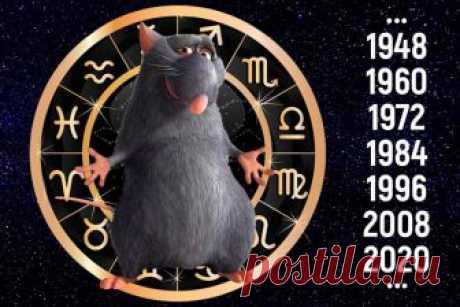 ТОЧНЫЙ Восточный гороскоп на 2019 год для Крысы: женщины, мужчины