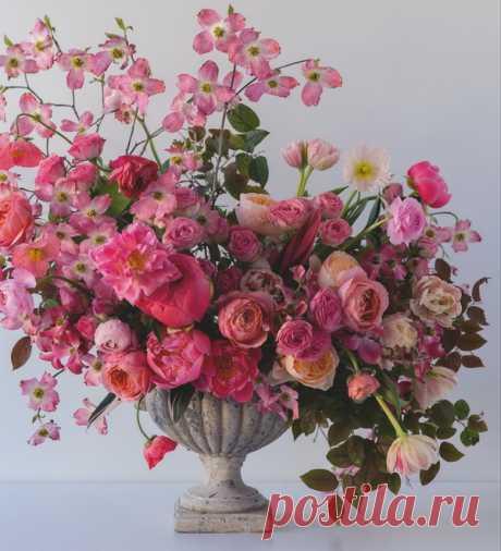Розовый — один из самых популярных цветов, а оттенков розового великое множество.