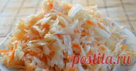 Худеем: Быстрая хрустящая маринованная капуста | Бюджетные и простые рецепты | Яндекс Дзен
