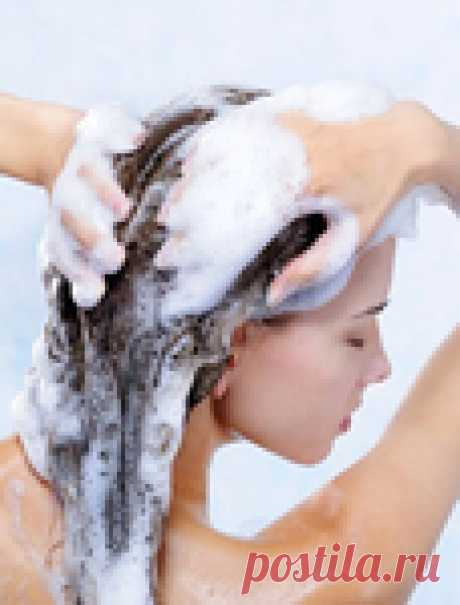 The house shampoo prepared from natural components